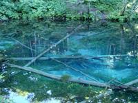 裏摩周・神の子池ダウンヒルツーリング(神の子池)